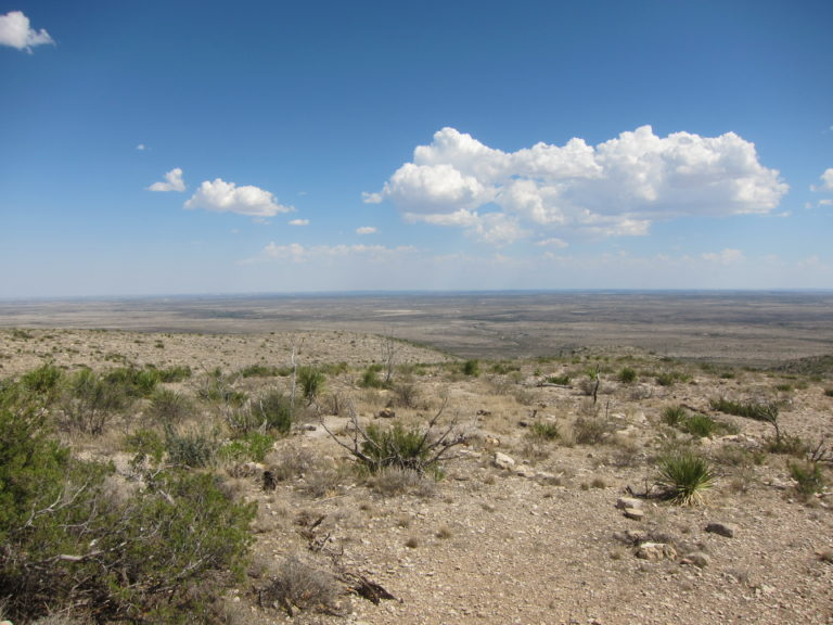 panoramic view of the desert above Carlsbad Caverns