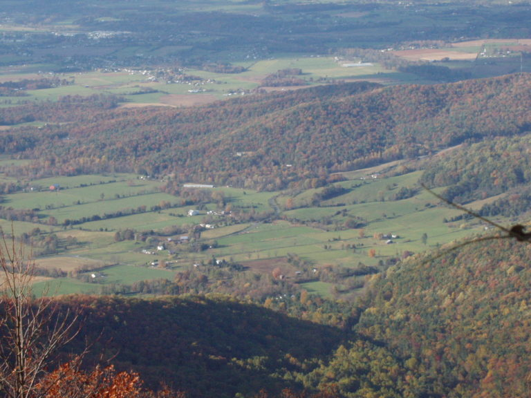 a view of the green farmland of the Shenandoah Valley
