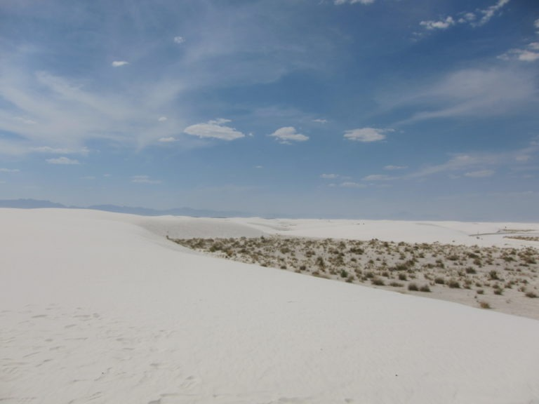 wide view image of sand dunes and desert shrub at White Sands National Monument