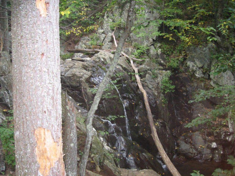 image of a small waterfall in Shenandoah National Park