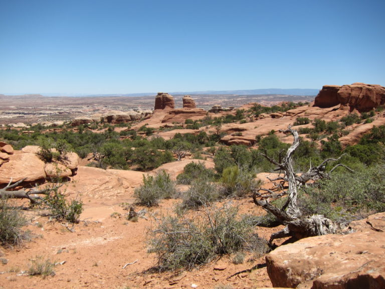 panoramic photo of rock desert in Arches National Park