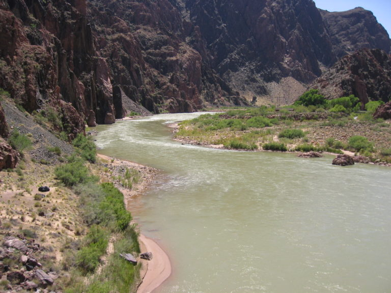 river level view of the green Colorado River