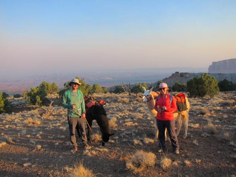 Joseph P Fisher and Kelly Fisher posing with two Wildland Llamas on a high mesa