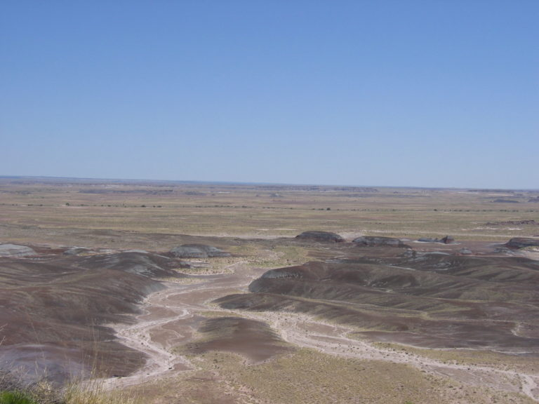 gray and green expanse in open desert
