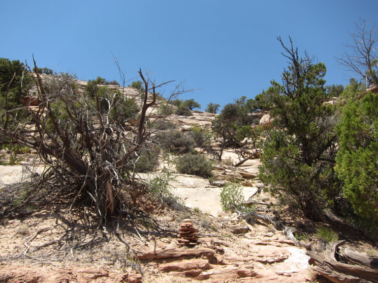 the rock scrambling section of the Neck Spring Trail