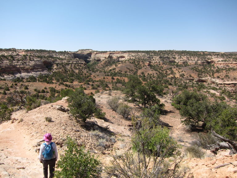 Kelly Fisher looking for the Neck Spring Trail in the Canyonlands desert