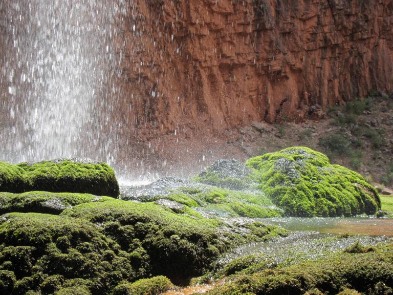 water falling on green moss at Ribbon Falls