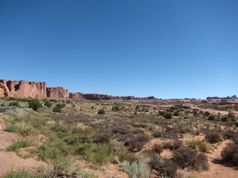 main roadway through Arches National Park surrounded by desert