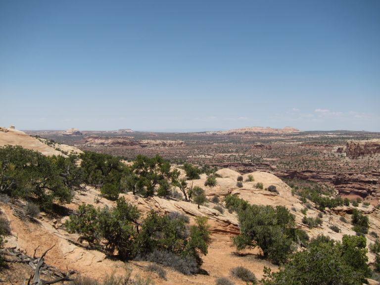 open views of Canyonlands from the top of the Neck Spring Trail