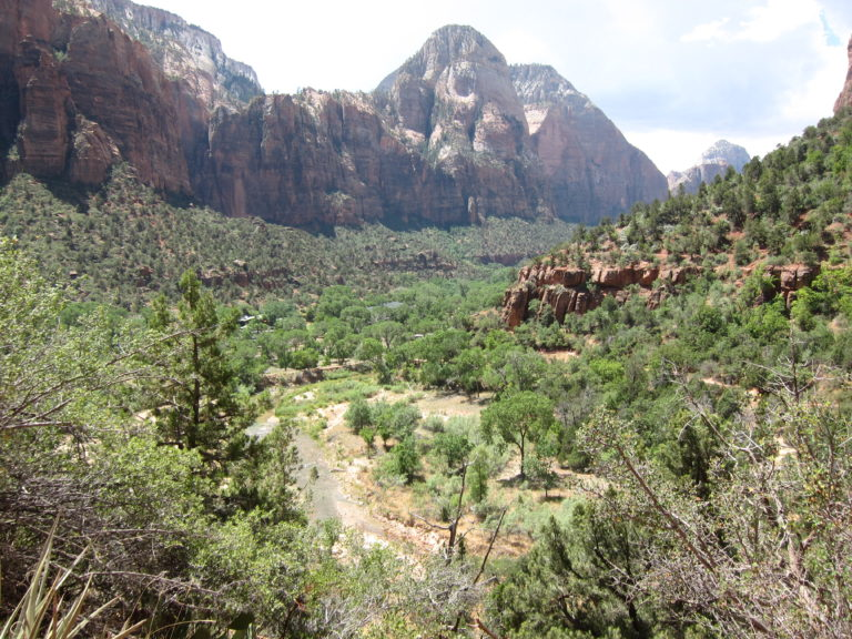 panoramic picture of main canyon in Zion National Park